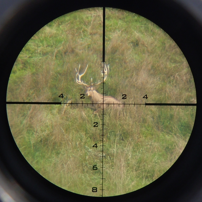 GAP reticle as used in many U.S. Optics models. No exotic dear were harmed for this magnificent photo.