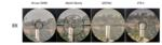 DLO Reviews: FFP 1-8x24 scopes.  March Shorty, GPOTAC, XTR II